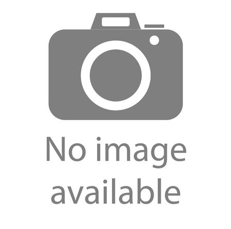 Ilustración de No image available sign. Internet web icon to indicate the absence of image until it will be downloaded. - Imagen libre de derechos