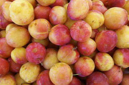 large group of red plums for sale in a market on the island of madeiraの写真素材