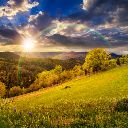Photo pour composite rural landscape. fence near the meadow and trees on the hillside. forest in fog on the mountain top in sunset light with rainbow - image libre de droit