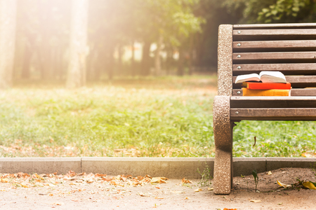 Foto de Stack of hardback books and Open book lying on bench at sunset park against blurred nature backdrop. Copy space, back to school. Education background - Imagen libre de derechos