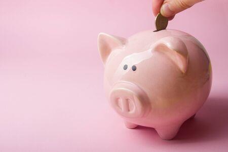 Photo pour Piggy bank and dollar cash money. Business, finance, investment, saving and corruption concept. - image libre de droit
