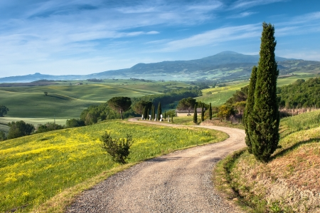 Photo for Landscape in Tuscany - Royalty Free Image