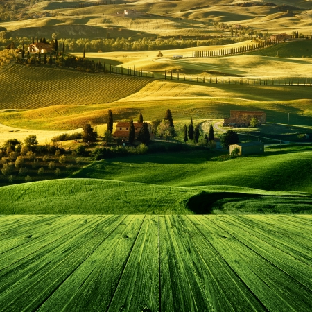 Landscape in Tuscany with wood floor