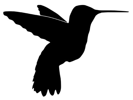 Illustration in style of black silhouette of hummingbirdのイラスト素材