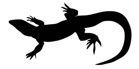 a black illustration of silhouette of lizard