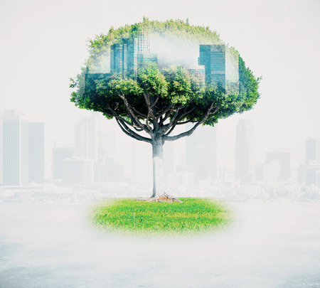 Photo pour Abstract tree with cityscape on light background. Double exposure - image libre de droit