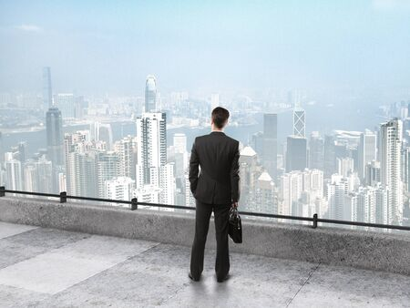 businessman with briefcase on the roof looking at city
