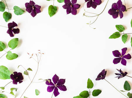 Foto für Frame of purple clematis flowers and leaves isolated on white. Top view. Copy space - Lizenzfreies Bild