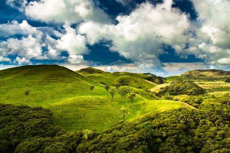 green hills near golden bay, south island, new zealand
