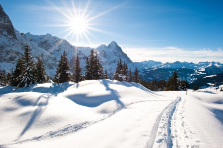 Photo for Panoramic scenery above Grindelwald, Switzerland in winter - Royalty Free Image