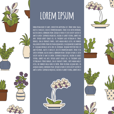 illustration with cartoon hand drawn home plant background: cactus, rose, orchid, succulent. Interior home design.