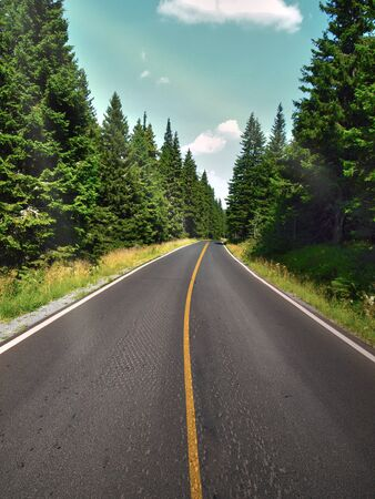 Photo for Summer road through the forest in the beautiful countryside with clear sky. Nice road with yellow stripe in the forest or mountains. - Royalty Free Image