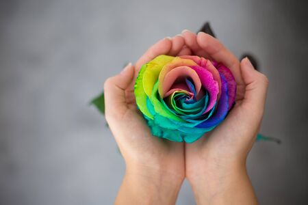 Photo pour Woman holding hands like heart with rainbow rose inside. Valentines postcard. Womens day. St. Valetines day. - image libre de droit