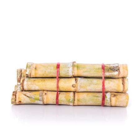 Fresh sugar cane. Studio shot isolated on white background