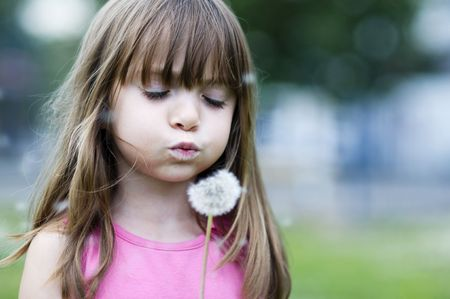 Little girl blowing a wild flower