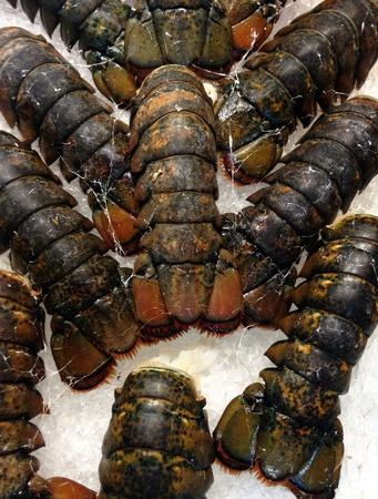 Seafood lobster tail