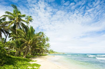 Martins Bay Barbados Caribbean