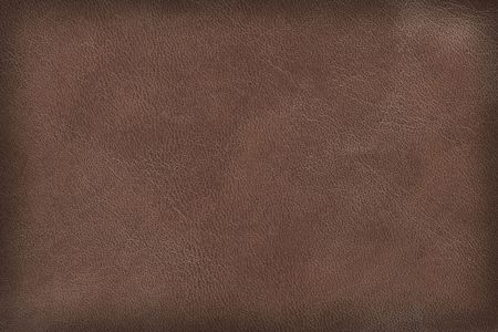 Brown leather texture. High-resolution scan.