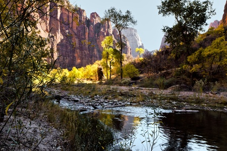View from the bank of the Virgin River