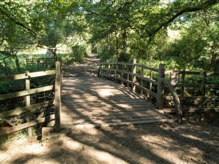 Winnie the Pooh bridge in Ashdown Forest
