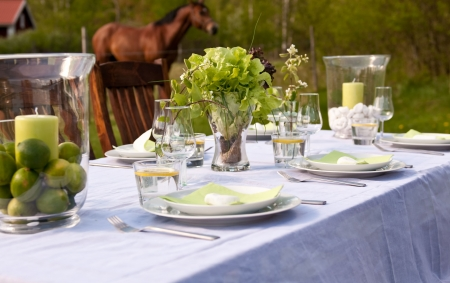 Table setting outdoors with horses in the background