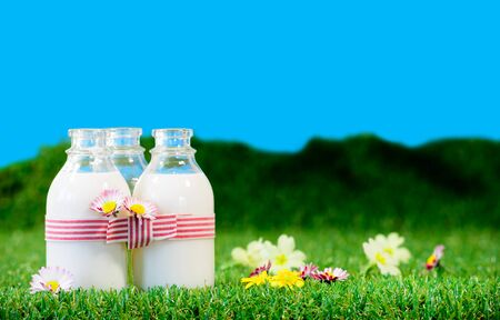 Photo pour Three small bottles of milk in a meadow with blue sky - image libre de droit