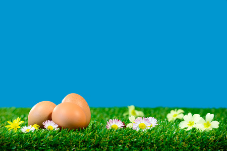 Photo pour Three fresh eggs on grass with beautiful flowers - image libre de droit