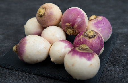 Photo for close up of group of organic turnips - Royalty Free Image