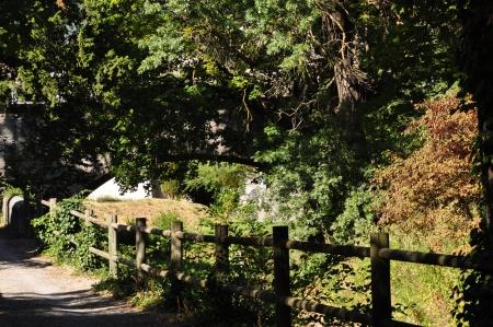 nature et pont