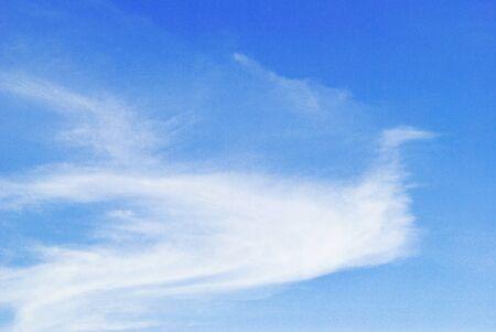 The bird cloud shape is on the blue sky