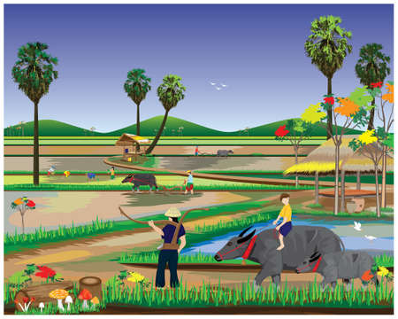 Illustration pour farmer work in paddy field,lifestyle of people at countryside vector design - image libre de droit