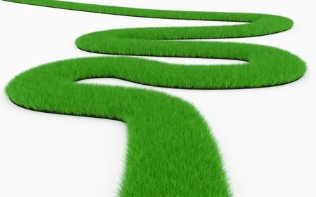 grass winding road