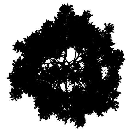 Illustration pour Tree top silhouette isolated - black simple detailed - vector illustration - image libre de droit
