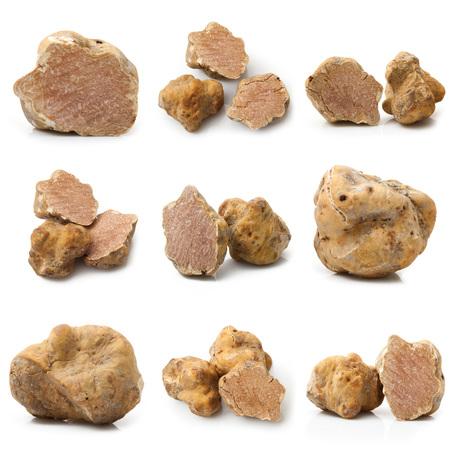 Photo pour original italian white truffles collage on white background - image libre de droit