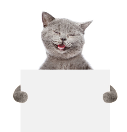Photo pour Smiling cat holding a white banner. isolated on white background. - image libre de droit