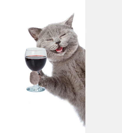 Foto de Happy cat holding a wineglass behind a white and blank banner. isolated on white background. - Imagen libre de derechos