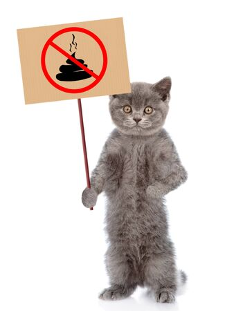 Photo for Kitten holds sign no dog poop. Concept cleaning up dog droppings. isolated on white background. - Royalty Free Image