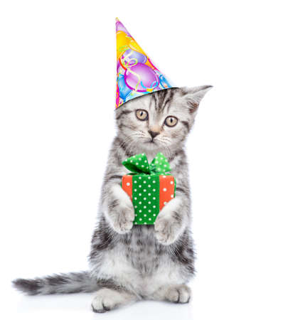 Photo pour Tabby kitten wearing a party hat holds gift box. isolated on white background .. - image libre de droit