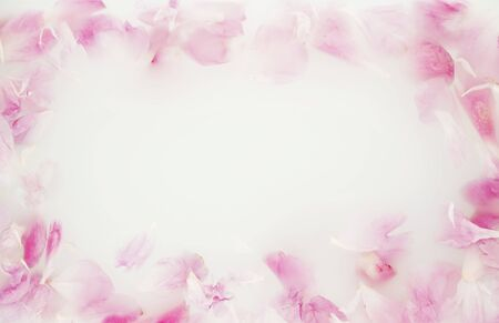 Photo pour Pink peony in milk water. Beauty spa and wellness treatment with flower petals in bath with milk. The concept of purity, tenderness, freshness, youth. Summer mood. Copy space, flat lay. - image libre de droit