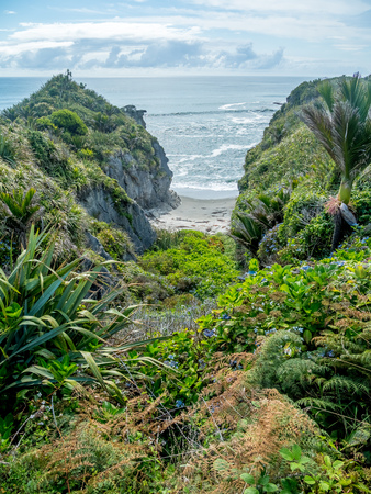 Hidden cove in the Tropical Rain Forest along the West Coast of New Zealand's South Island