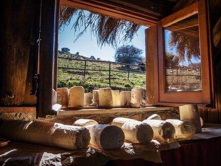 Photo of a typical Sicilian farmhouse cheese
