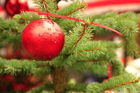 Red Christmas ball on a spruce