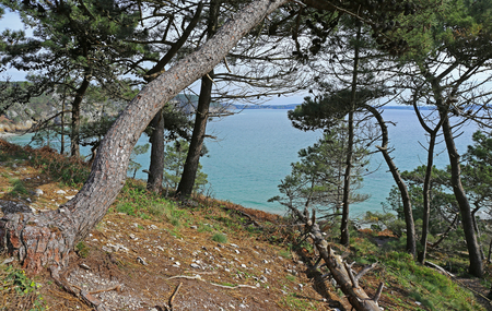 Coast of Brittany at Ile Vierge, Finist?re, France