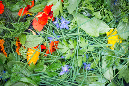Spread of mixed edible flowers and herbs, with bright orange nasturtium, marigolds, borage, and green chives, parsley, and fennel.