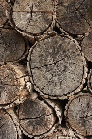 Photo pour Stackof firewood to be used as a background - image libre de droit