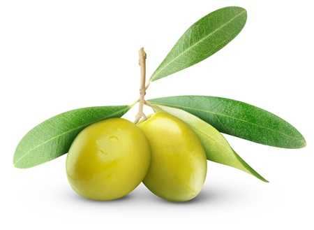Photo for Two green olives on branch with leaves isolated on white - Royalty Free Image