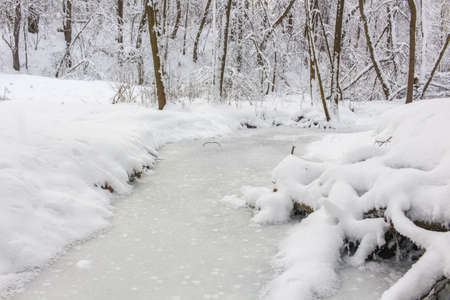 Photo pour An ice covered little stream in the winter forest covered with snow. Repinka river in Obninsk, Russia - image libre de droit