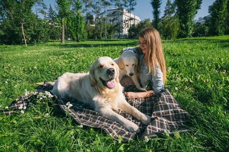 Photo for Girl with two golden retriever dogs in a park - Royalty Free Image