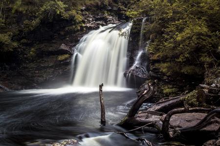 Foto per Falls of Falloch, waterfall with dead tree in Loch Lomond - Immagine Royalty Free