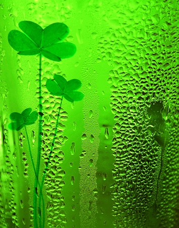 Green clover beer background st.Patrick's day holiday celebration, lucky conce